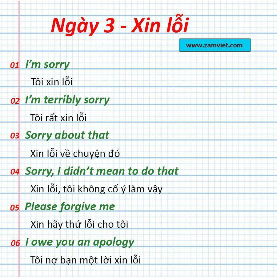 Ngày 3: Nói lời xin lỗi - Từ vựng tiếng anh cơ bản mỗi ngày
