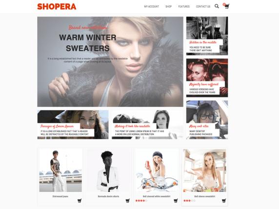 The Shopera demo page.