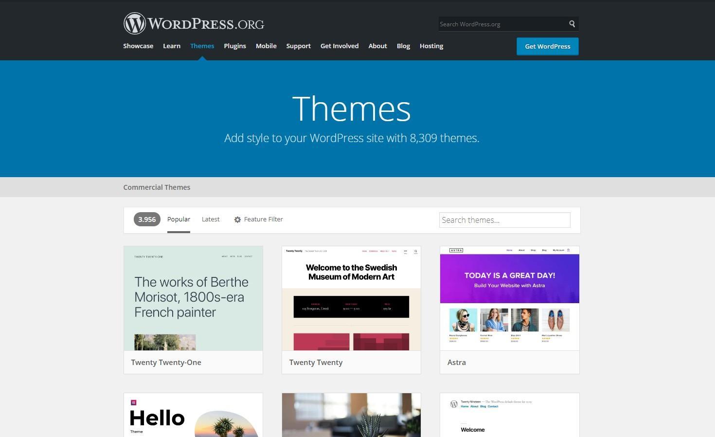 Theme WordPress Store Online
